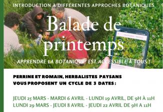 Petites balades de printemps et de découverte de différentes approches botaniques mars-avril 2021