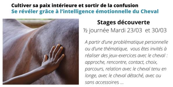 Se révéler grâce à l'intelligence émotionnelle du Cheval 23 ou 30 mars 2021